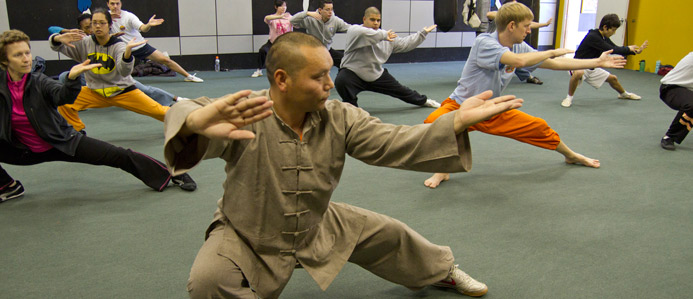 houston-shaolin-taiji-banner